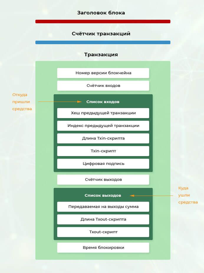 Подробная структура блока в блокчейне биткоина